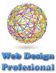 webdesignprofesional
